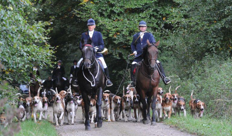 Read more about the article Pourquoi la Gauche n'a-t-elle pas interdit la chasse à courre ?