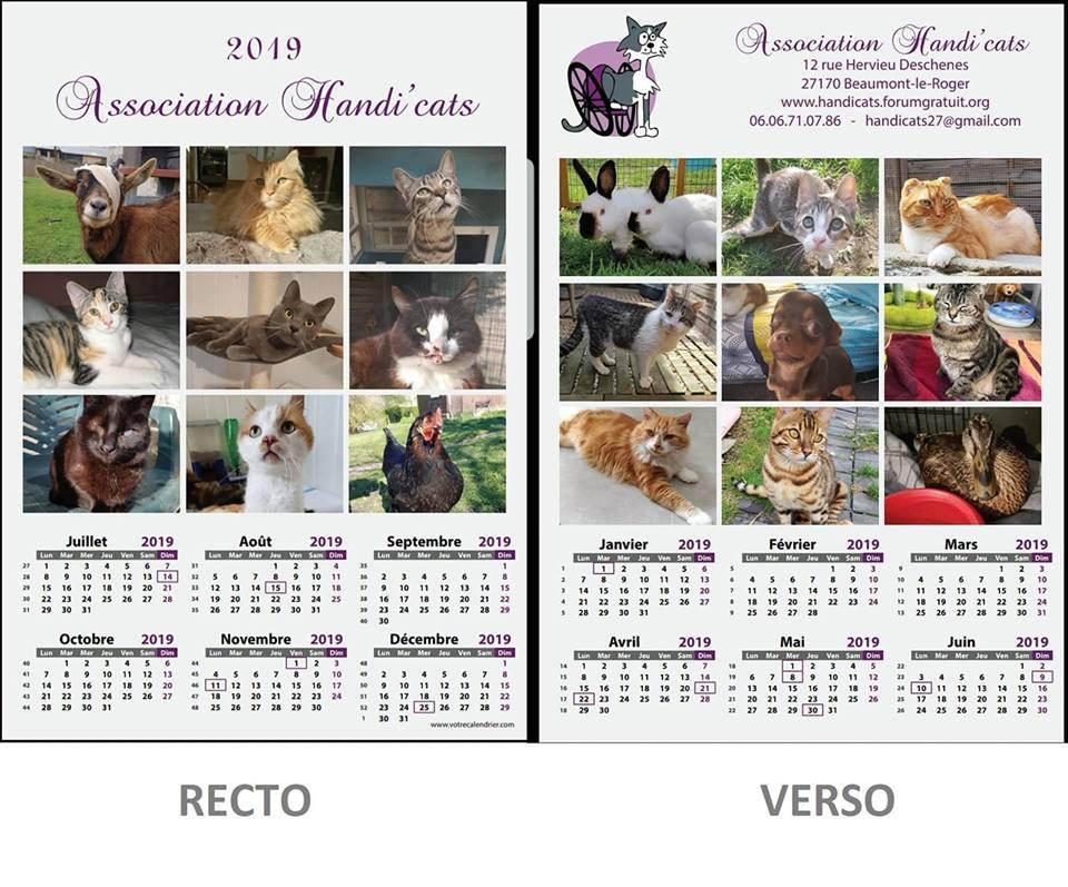 Handi'Cats calendrier
