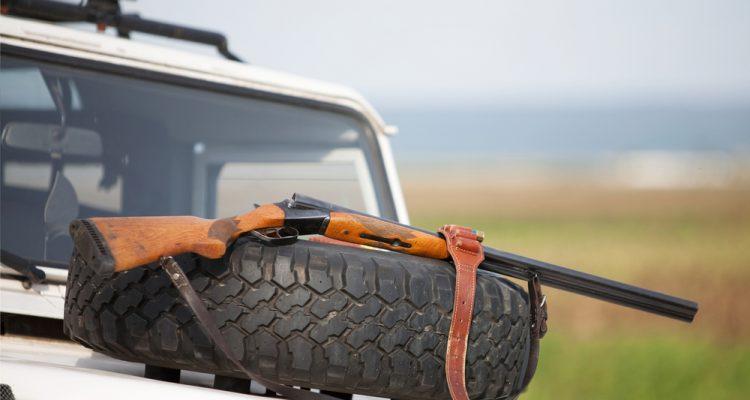 Read more about the article Safari-chasses: quelques questions au fondateur de la page «Ban trophy hunting France/Un clic pour un safari»