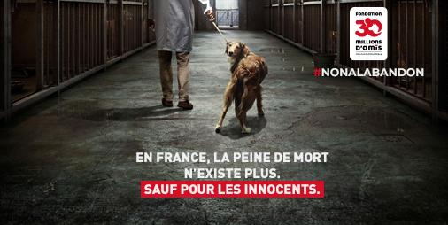 Nouvelle campagne de «30 millions d'amis» contre l'abandon d'animaux
