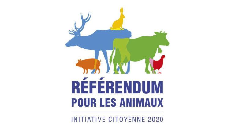 Read more about the article Lancement du projet «référendum pour les animaux»