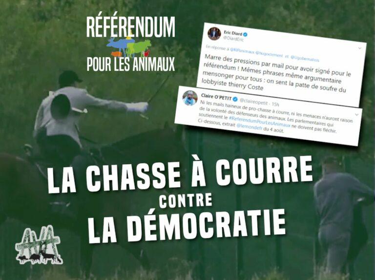 Read more about the article AVA: «La chasse à courre contre la démocratie»