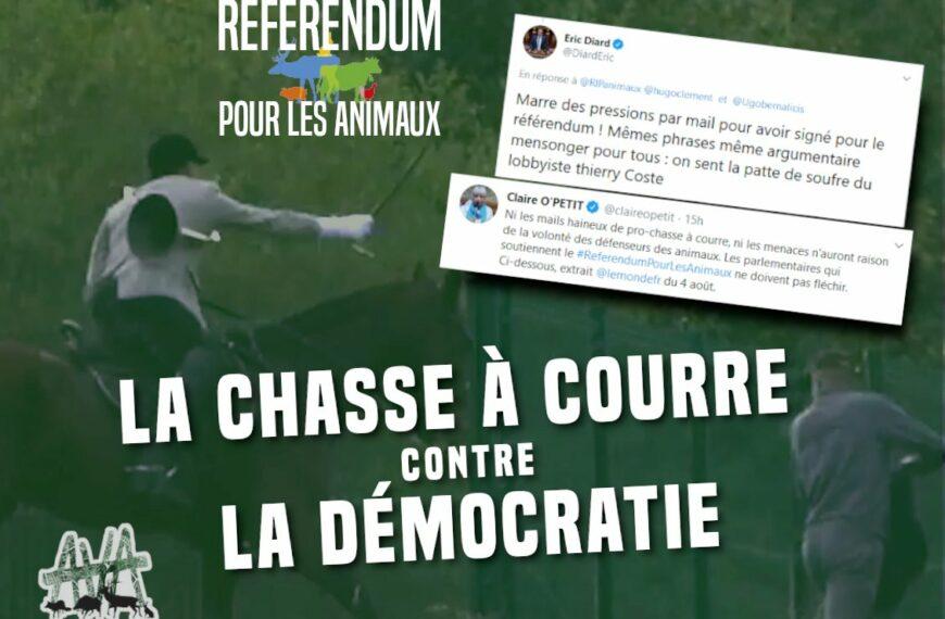 AVA: «La chasse à courre contre la démocratie»