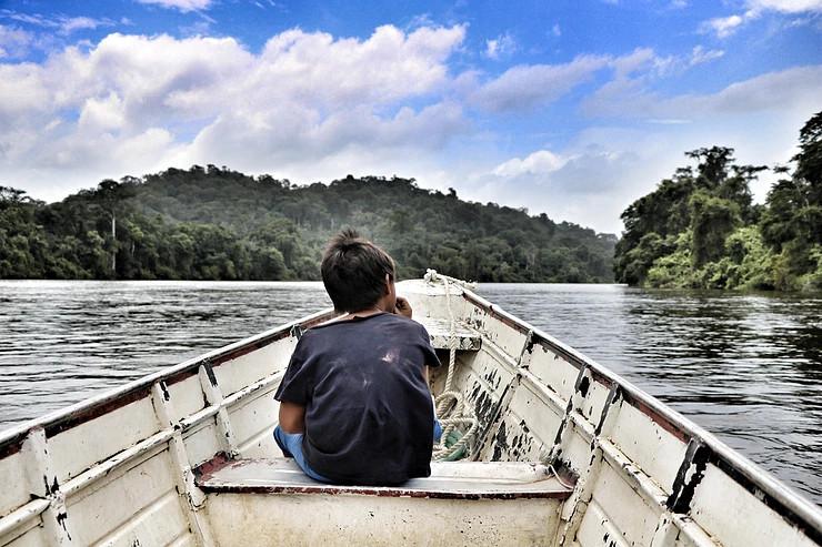 Read more about the article Tribune: «Pour protéger l'Amazonie française et ses gardiens, reconnaissons leurs droits»