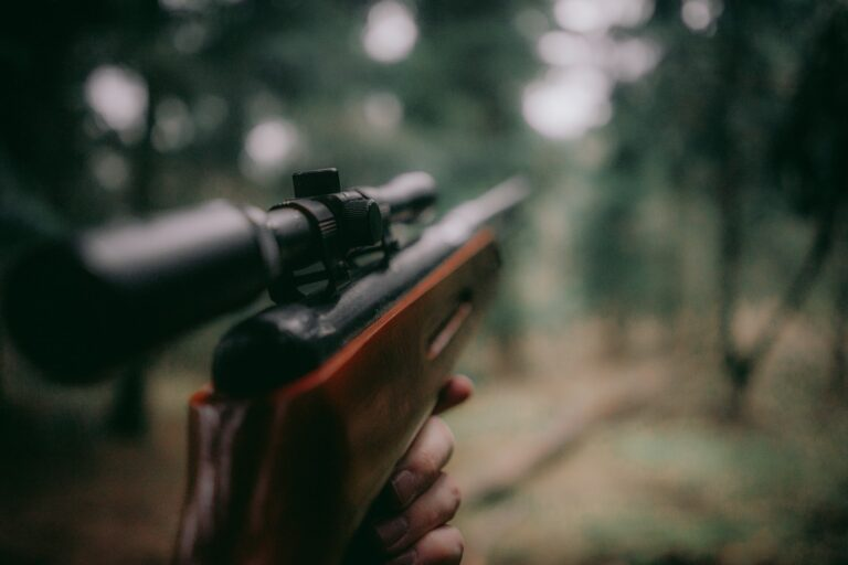 Read more about the article Accidents de chasse: il faut faire le procès de la chasse elle-même