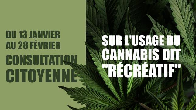 L'Assemblée nationale «consulte» sur le cannabis récréatif
