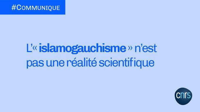 Read more about the article Le CNRS en défense des études «postcoloniales» et «intersectionnelles»