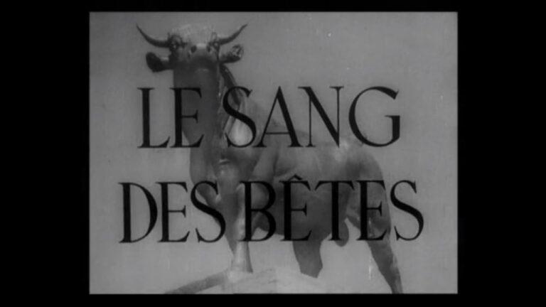 Read more about the article Le sang des bêtes, de Georges Franju (1949)