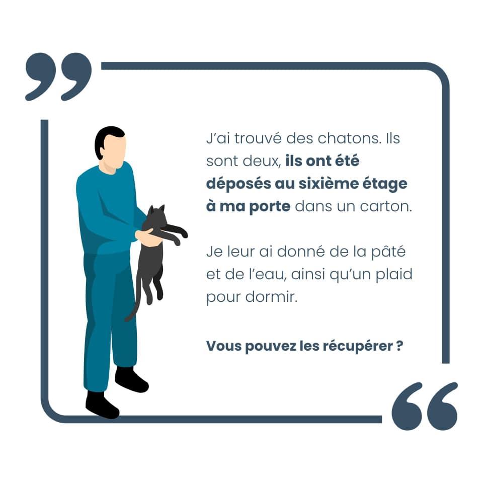 nine lives paris - stop abandon