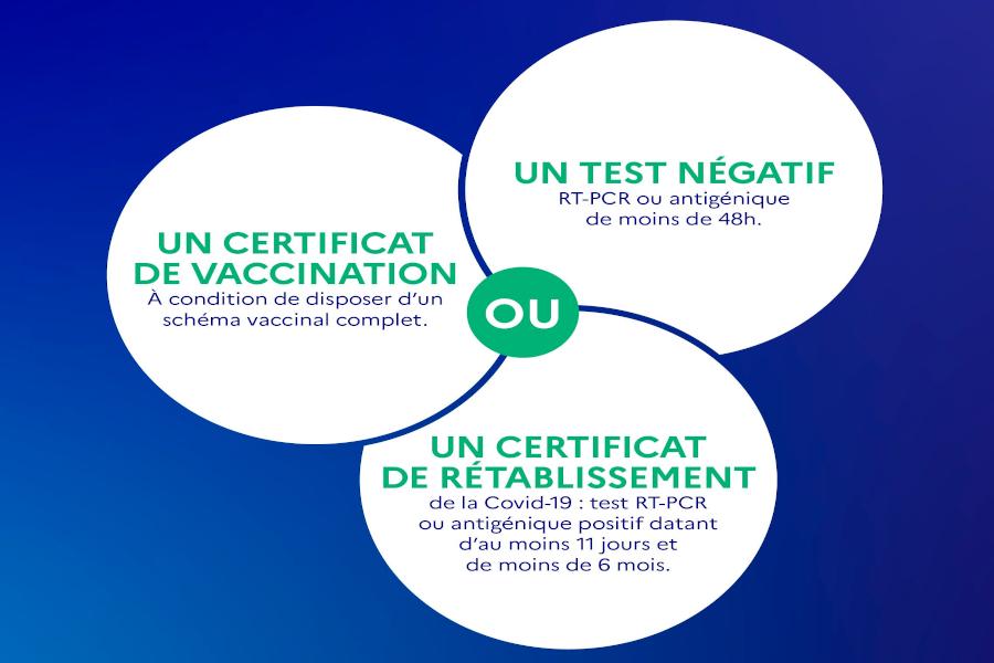 Read more about the article Un constat sur le rapport entre anti-pass sanitaire et anti-vax