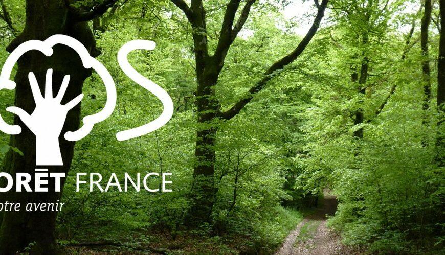 L'appel du collectif SOS forêt France