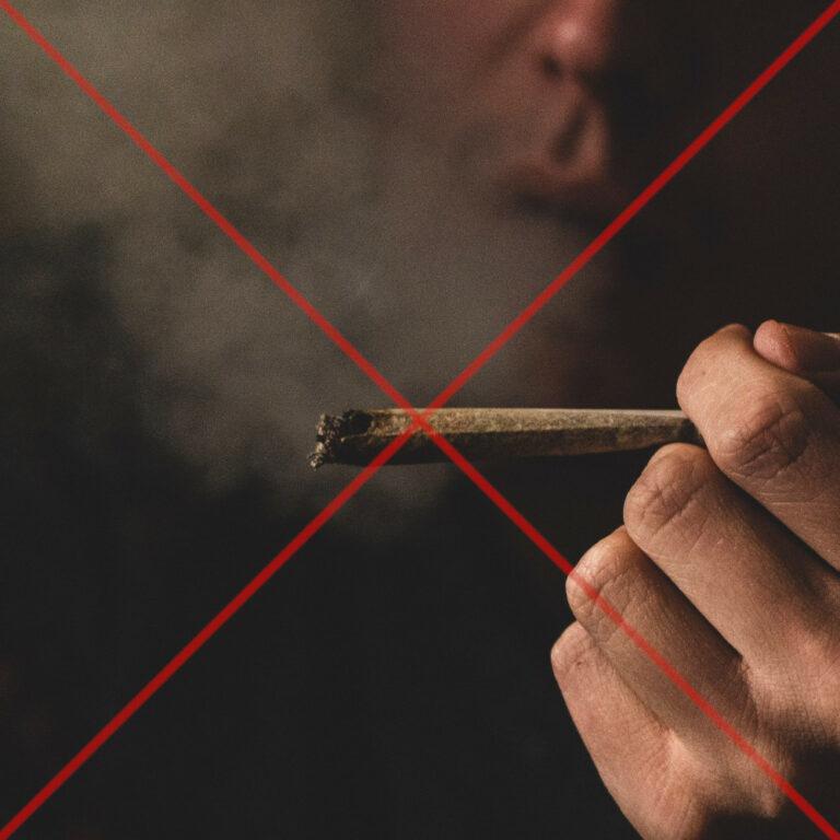 Read more about the article Le flop de la consultation citoyenne sur le cannabis